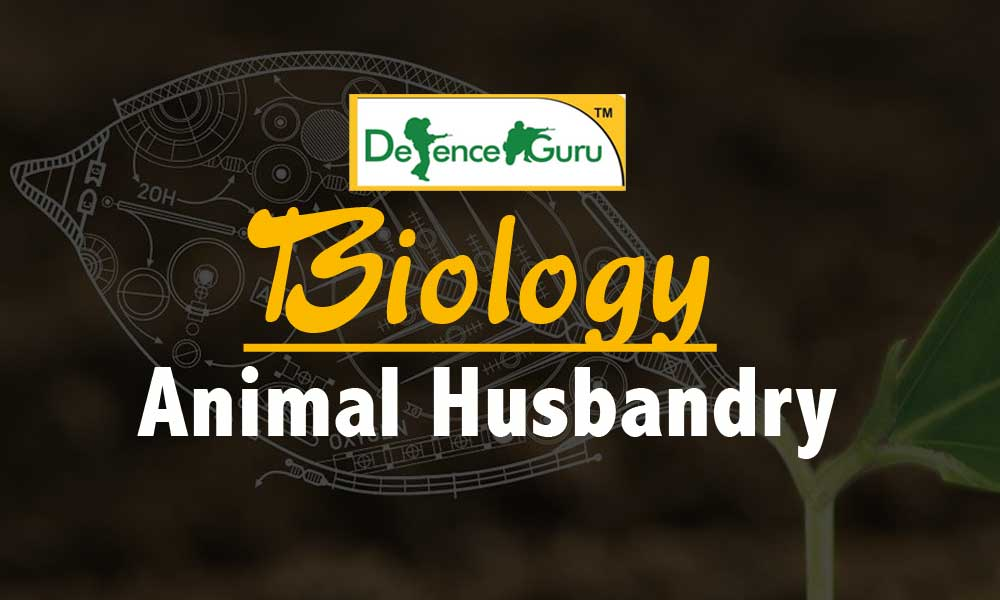 Biology Animal Husbandry